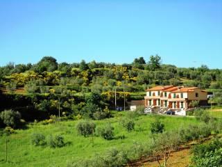 Foto - Villa a schiera Strada Provinciale 14 72, Montalcino