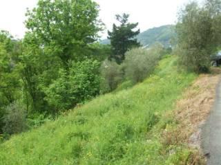 Foto - Terreno edificabile residenziale a Cogorno