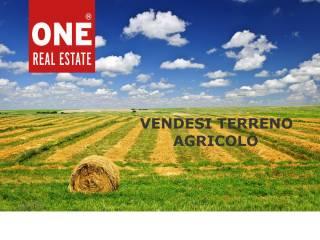 Foto - Terreno agricolo in Vendita a Villasanta