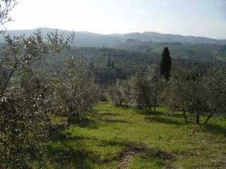 Foto - Terreno agricolo in Vendita a San Casciano in Val di Pesa
