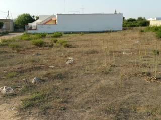 Foto - Terreno agricolo in Vendita a Nardo'