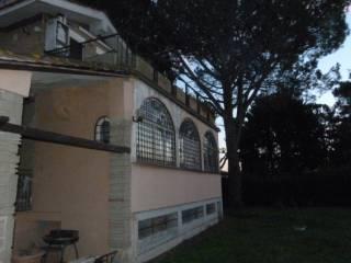 Foto - Villa, buono stato, 288 mq, Trevignano Romano
