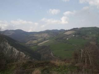 Foto - Terreno agricolo in Vendita a Sarsina