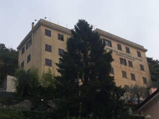 Foto - Palazzo / Stabile cinque piani, da ristrutturare, Camogli