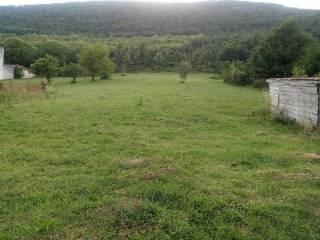 Foto - Terreno agricolo in Vendita a Buonabitacolo