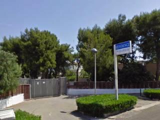 Foto - Quadrilocale via Bari, Giovinazzo
