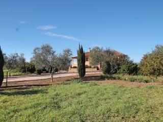 Foto - Villa, nuova, 260 mq, Pescia Romana, Montalto Di Castro