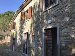 Foto - Rustico / Casale, ottimo stato, 370 mq, Molin Nuovo, Arezzo