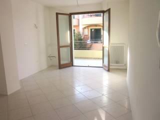 Foto - Trilocale nuovo, primo piano, Metaurilia, Fano