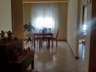 Foto - Appartamento via Collodi, Morovalle Scalo, Morrovalle