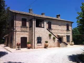 Foto - Rustico / Casale Contrada Torrenova, Potenza Picena