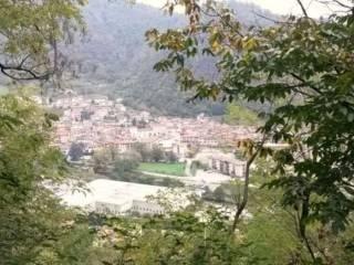 Foto - Terreno agricolo in Vendita a Sarezzo
