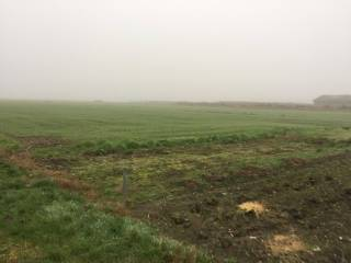 Foto - Terreno agricolo in Vendita a Soliera
