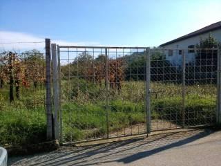 Foto - Terreno edificabile commerciale a Riardo