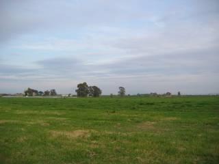 Foto - Terreno agricolo in Vendita a Cancello ed Arnone