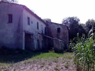 Foto - Rustico / Casale, da ristrutturare, 500 mq, Maltignano