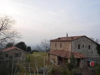 Foto - Casale, ottimo stato, 240 mq, Roccalbegna