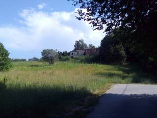 Foto - Rustico / Casale, da ristrutturare, 80500 mq, Maltignano