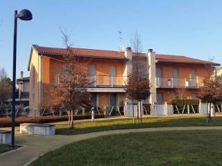 Foto - Bilocale nuovo, primo piano, Piazzola Sul Brenta