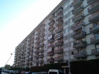 Foto - Trilocale buono stato, settimo piano, Ceglie del Campo, Bari