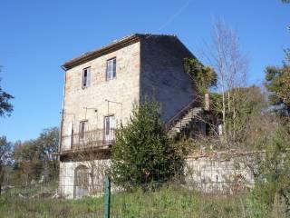 Foto - Rustico / Casale via due Cone, La Badia, Ceccano
