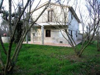 Foto - Villa, nuova, 128 mq, Fabrica di Roma