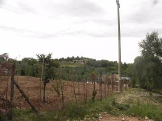Foto - Villa Contrada Mannarelle, Vico Del Gargano