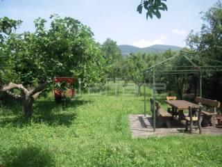 Foto - Terreno agricolo in Vendita a Cascina