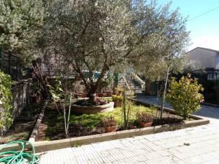 Foto - Appartamento ottimo stato, piano terra, Fabrica Di Roma