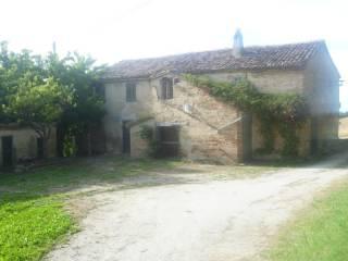 Foto - Casa colonica, da ristrutturare, 453 mq, Cerasa, San Costanzo