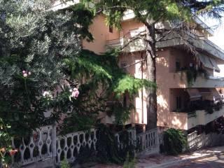 Foto - Appartamento via Terra Vergine 4, Madonna del Fuoco, Pescara