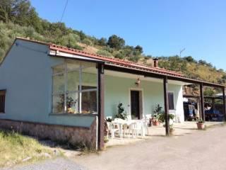 Foto - Rustico / Casale Contrada Acqua Mattea 1, Santa Caterina Albanese