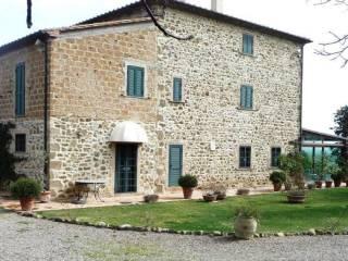 Foto - Palazzo / Stabile tre piani, ottimo stato, Saturnia, Manciano