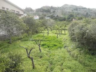 Foto - Terreno agricolo in Vendita a Saponara