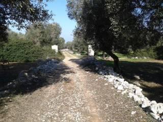 Foto - Terreno agricolo in Vendita a Taurisano