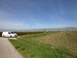 Foto - Terreno agricolo in Vendita a Agliana