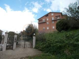 Foto - Palazzo / Stabile via Della Pinetina snc, Calvi Dell'Umbria