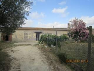 Foto - Rustico / Casale, da ristrutturare, 105 mq, Tarquinia