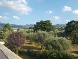 Foto - Villa, nuova, 375 mq, Mentana