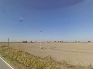 Foto - Terreno agricolo in Vendita a Argenta