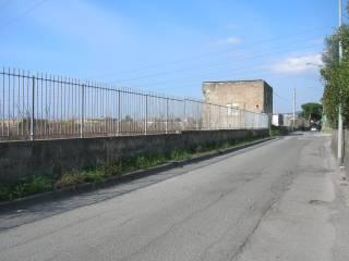 Foto - Terreno agricolo in Vendita a Torre Annunziata