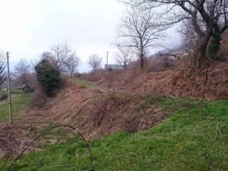 Foto - Terreno agricolo in Vendita a San Gregorio Matese