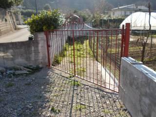 Foto - Terreno agricolo in Vendita a Fisciano