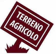 Foto - Terreno agricolo in Vendita a Portogruaro