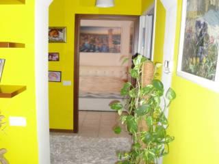 Foto - Bilocale nuovo, primo piano, Briga Novarese