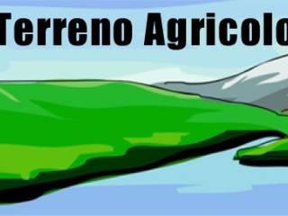 Foto - Terreno agricolo in Vendita a Palazzuolo sul Senio