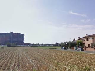 Foto - Terreno agricolo in Vendita a Bassano del Grappa