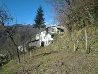 Foto - Casa indipendente 430 mq, da ristrutturare, Accereto, Favale di Malvaro