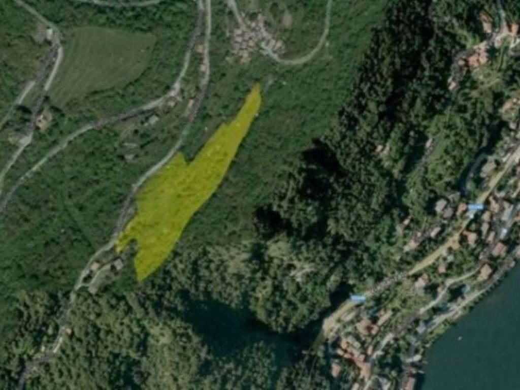 foto  Terreno agricolo in Vendita a Moltrasio