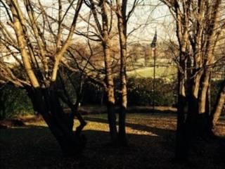 Foto - Villa unifamiliare via dei salici, Appiano Gentile